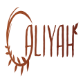 Aliyah Co.'s picture